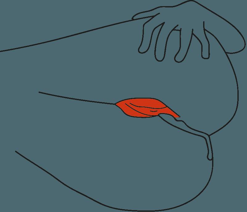 153 - der Spermarückfluss | Adam spricht